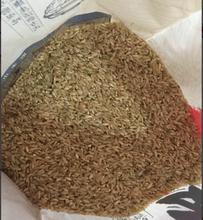 中国是严重缺硒的国家吃富硒大米补硒已经势在必行