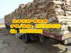 福州打造国家一级吸水膨胀袋厂家