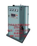立式电热水锅炉图片