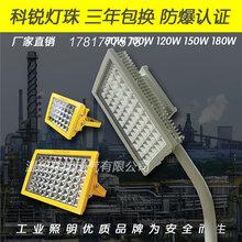护栏式100W路灯LED防爆灯图片