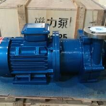 厂家供应32CQ-25不锈钢磁力泵流量6.6立方扬程25米电机1.1KW磁力离心泵化工泵