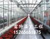 承建pc板温室建设阳光板温室建设物美价廉
