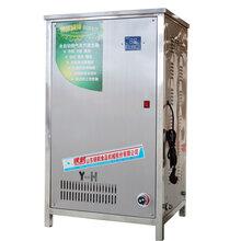 银鹤蒸汽发生器YH-60全自动燃气蒸汽机2分钟出蒸汽蒸发量60kg