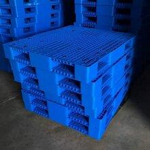 潍坊塑料托盘烟台塑料托盘青岛塑料托盘塑料防潮板