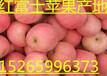 红富士苹果价格走低