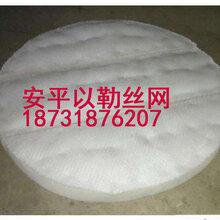 聚丙烯絲網除沫器-聚丙烯絲網除沫器供應第一廠家圖片