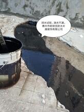 惠州市惠東外墻防水補漏公司歐耐克專業防水,保衛您的愛巢圖片