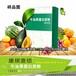大麦若叶青汁粉OEM代加工贴牌-混合果汁酵素粉ODM生产厂家