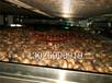 智烘牌山茶籽烘干系统,油茶籽烘干系统ZH-JN-HGJ03干燥成本低