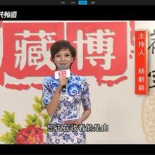 河南电视台华豫之门鉴宝栏目组怎么报名图片
