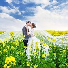春暖花开,安义天长地久带您一起去边踏青,边拍婚纱照咯