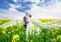 供应安义婚纱摄影哪家好,安义天长地久婚纱摄影来告诉您图片