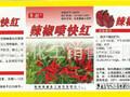 促进辣椒増红早熟色泽好辣味足果实大辣椒喷快红不软皮不皱皮不落果图片
