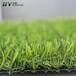 延吉人造草坪厂家供应SY-X-2幼儿园假草皮健身房车展等装饰绿化人造草坪