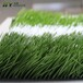 延吉人造草坪厂家供应足球场专用假草皮,经久耐用5-8年,专业团队施工铺装