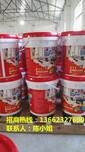 防水涂料价格,防水涂料品牌,防水涂料施工工艺广东防水厂家防水十大品牌图片