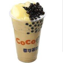 Coco都可奶茶能在奶茶行业推到一个新的高度吗图片