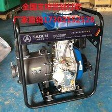萨登4寸柴油化工泵小型抽腐蚀性液体化工泵DS100HPE价格?#35745;? />                 <span class=