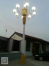 江西5米40瓦太阳能路灯厂家直销图片