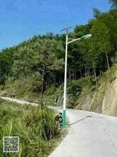 四川江油市路灯专业供应商太阳能路灯风光互补路灯-7米LED单臂灯图片