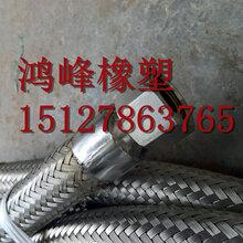 鸿峰专业耐腐蚀DN50环氧丙烷专用金属软管图片