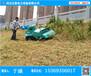 邵阳工程机械除草机什么价位_黄河堤坝专用割草机_动力强不易损坏