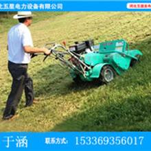 阿勒泰新款上市割草机--河北五星割草机厂家---新款割草机效率更高