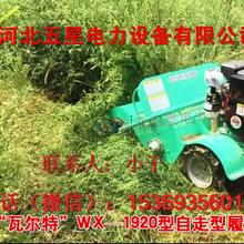 新疆阿勒泰打草季专用割草机-方便快捷的割草机多少钱-割草机价格
