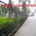 广东交通护栏网厂家深圳公路隔离网热销惠州道路防护网批发