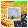 500公斤-200吨粮食烘干机可以烘干水稻玉米高粱等作物