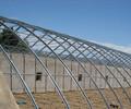 蔬菜温室大棚在温度低阴天时该怎么样进行管理呢
