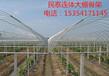 天津民泰厂家批发大棚骨架双模大棚种植/养殖大棚
