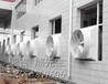 淄博排烟风机_淄博屋顶风机_淄博排风扇_淄博工业排风扇_淄博工业风机