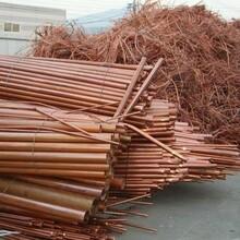 葫芦岛低压电缆回收本月价格公司图片