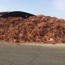 容城县耐火电缆回收价格铜厂直收