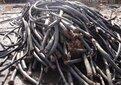 泰安電線電纜回收價格行情圖片