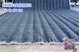 大棚棉被生产设备棉被机/切被机专业生产加工定做