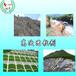 江苏南京公路边坡护坡绿化喷播专用高次团粒剂