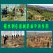 园田保水剂吉林长春大量批发农田农作物土壤保湿抗旱保水剂