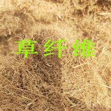 山西晋城草纤维岩石护坡喷绿化专用草纤维木纤维图片