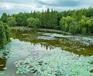 江蘇南京河道底泥原位生態修復工程底質改良劑水質改良劑
