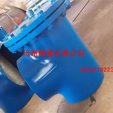 批发生产碳钢三通过滤器,水处理设备用T型过滤器