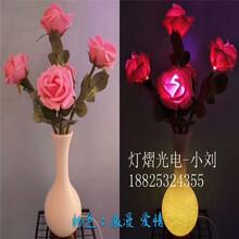 玫瑰花瓶灯-花瓶灯-马蒂连花瓶灯