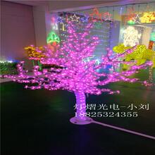 灯光节产品树灯-樱花树灯