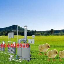 养殖保温设备养殖专用锅炉