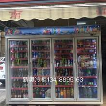 国产冷柜排行榜深圳新奥生产厂家水果冷库饮料展示柜