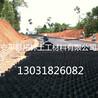 厂家直销耐用塑料土工格室路基加固立体土工格室路面坡道蜂巢格室