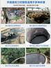 鱼塘清淤抽粪嘉能2.2kW双刀切割泵无堵塞污水泵杂质泵