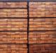 进口原木木材规格加工防腐木