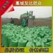 浙江湖州当地有卖发酵羊粪的吗?干鸡粪市场前景如何?